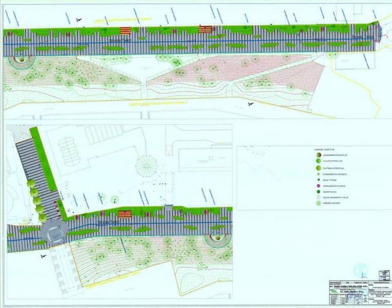 remus-becheru-zidul6-proiect