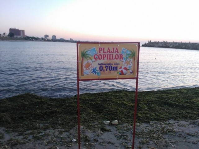 plaja_copiilor_mangalia_alge