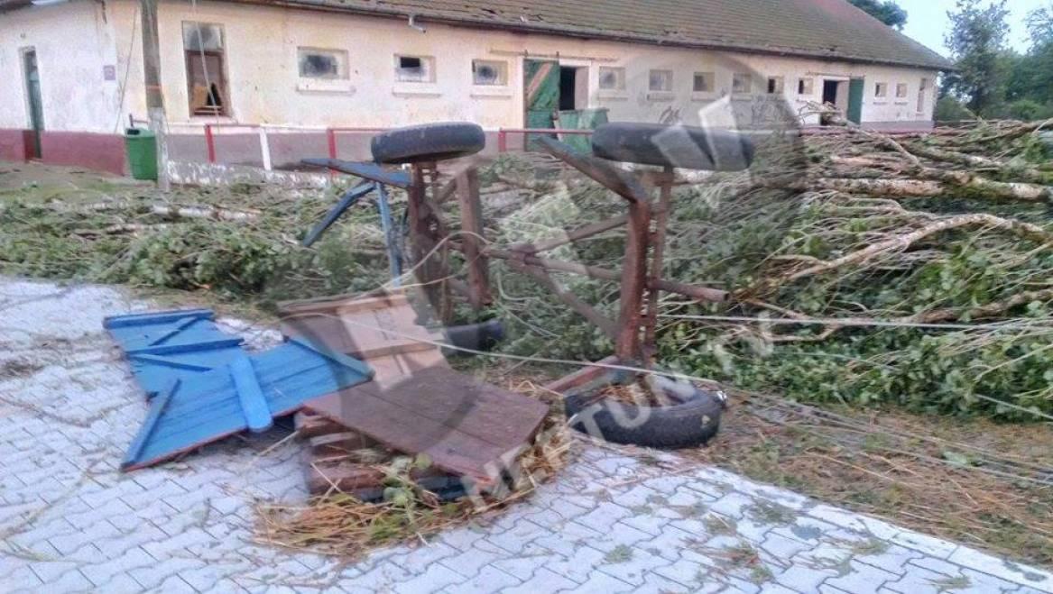 Natura dezlănțuită! Herghelia din Mangalia a fost răvășită de o tornadă GALERIE FOTO